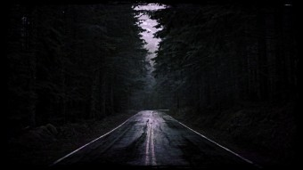 An image of road in the forest during dawn